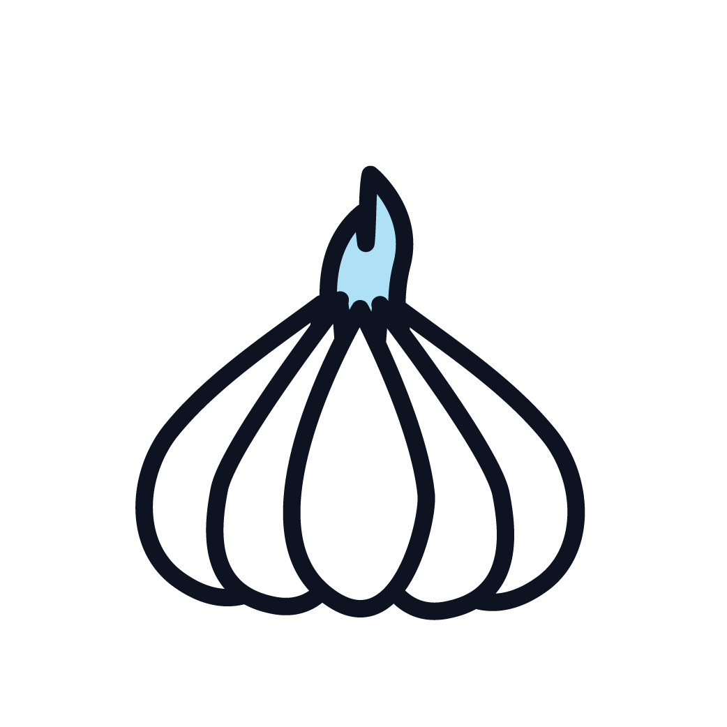 This is an icon representing garlic.