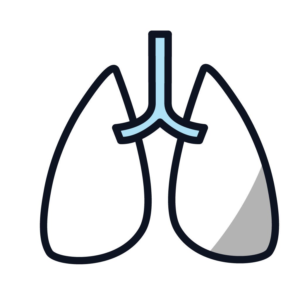 This is an icon representing lung cancer.