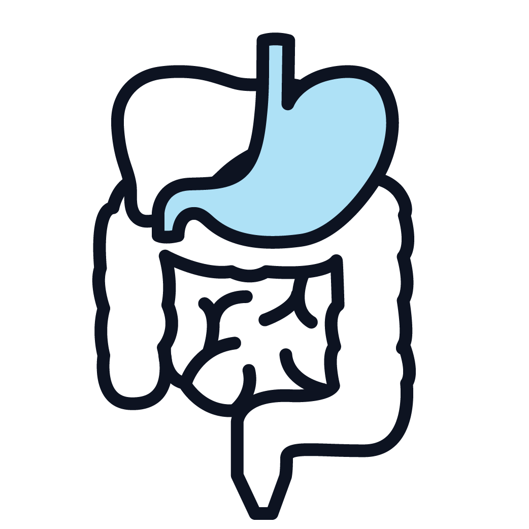 This is an icon representing stomach cancer.