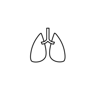 Body part - lungs